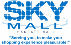 sky-mall-logo-with-tag